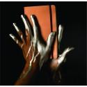 Notebook deluxe A5 coperta metalizata bronz